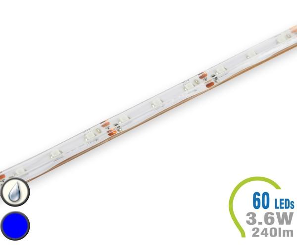 LED Stripe 60 LED/m 240 lm/m Blau IP65
