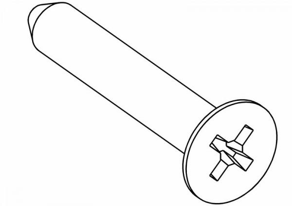 Senkkopf PZ2 Schneidschraube 5x30 mm