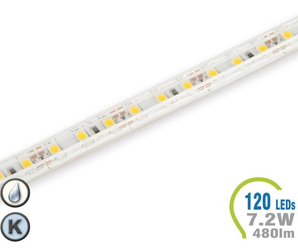 LED Stripe 120 LED/m 480 lm/m  IP65 Kaltweiß