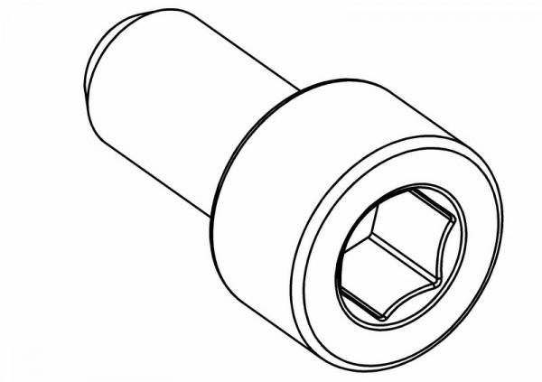 Zylinderkopf Innensechskantschraube M5x10 mm