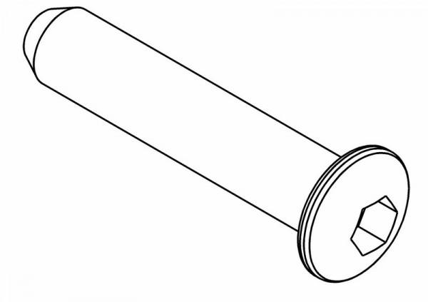 Rundkopf Innensechskantschraube M6x30 mm