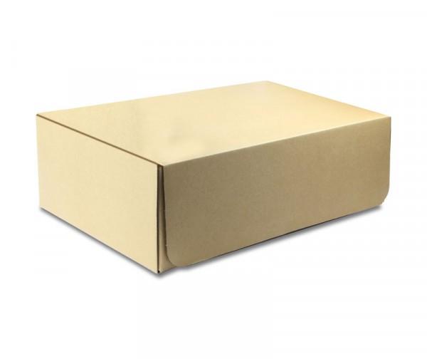 Papp-Austauschbox (für R14010)